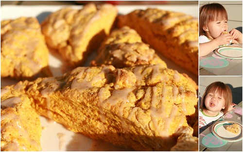 Pumpkin scones.