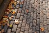 Autumn in Bristol (Phil Burns) Tags: street autumn leaves bristol gimp olympus urbanjungle cobbles ufraw xz1 connscameras