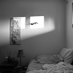 6:30pm (Photofidelity) Tags: light blackandwhite bird bed nikon shadows room squareformat buffalony 630pm meghanherald nikonp7000