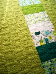 QD Springtime (4) (farbstoff-bridge) Tags: long arm quilting