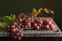 Cardinal Grape (panga_ua) Tags: lighting light stilllife art colors stone composition canon spectacular artwork soft artistic availablelight vine ukraine poetic fresh creation grapes granite imagination natalie elegant arrangement grape tabletop gettyimages bodegon subtle naturemorte panga artisticphotography rivne naturamorta artphotography bunchofgrapes sharpfocus vitisvinifera cardinalgrape stonetabletop  nataliepanga metallictray