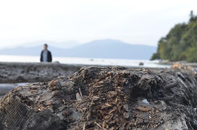 Wreck Beach Texture