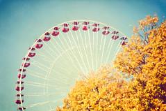 Wheel in the sky (pixelmama) Tags: autumn chicago fall texture leaves yellow vintage journey squareformat ferriswheel navypier gettyimages goldenfoliage chicagoist hcs illlinois wheelinthesky keepsonturnin clichsaturday pixelmama