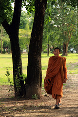 Buddhist monk in traditional clothing - The Kingdom of Ayutthaya  from 1350 to 1767 - Part 4 (Meshari Al-Rezaihan) Tags: trees tree green grass century canon walking thailand asia southeastasia bangkok buddha central buddhism unescoworldheritagesite unesco siam sukhothai ayutthaya chaophrayariver buddhistmonk ancientcity canonlens heritagesite sixteenth mahayana theravada ancientcapital malaypeninsula meshari lens18200mm totallythailand  canon550d canoneos550d eos550d alrezaihan kingdomofayutthaya thekingdomofthetais krungtai buddhistmonkintraditionalclothing buddhistmonkwalking
