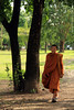 Buddhist monk in traditional clothing - The Kingdom of Ayutthaya  from 1350 to 1767 - Part 4 (Meshari Al-Rezaihan) Tags: trees tree green grass century canon walking thailand asia southeastasia bangkok buddha central buddhism unescoworldheritagesite unesco siam sukhothai ayutthaya chaophrayariver buddhistmonk ancientcity canonlens heritagesite sixteenth mahayana theravada ancientcapital malaypeninsula meshari lens18200mm totallythailand อาณาจักรอยุธยา canon550d canoneos550d eos550d alrezaihan kingdomofayutthaya thekingdomofthetais krungtai buddhistmonkintraditionalclothing buddhistmonkwalking