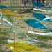 Pintemos el Cielo de Rosario - XI Festival