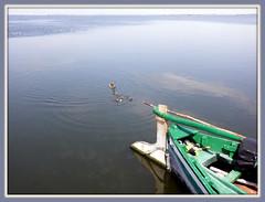 CALMA   L´ALBUFERA  VALENCIA (Buscavientos) Tags: españa valencia lago la albufera