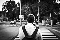 Ready To Go (Nicolas Pavlidis) Tags: life street city blackandwhite bw trafficlight crossing stadt mann graz zebrastreifen ampel leben kreuzung warten weiting mman strase blackwhitephotos