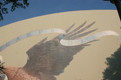 El Segundo High School (Anna Sunny Day) Tags: eagle elsegundohighschool artmuralelsegundocalifornia