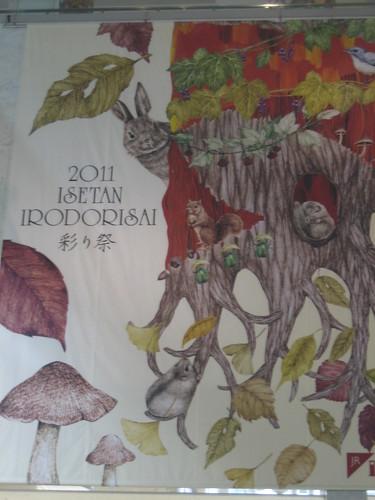 kinoko20110921 005