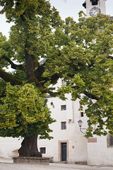 "Hohensalzburg Courtyard • <a style=""font-size:0.8em;"" href=""http://www.flickr.com/photos/55747300@N00/6171135274/"" target=""_blank"">View on Flickr</a>"