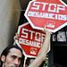 Batalla al desahucio (Informe Semanal 17/11/2012)
