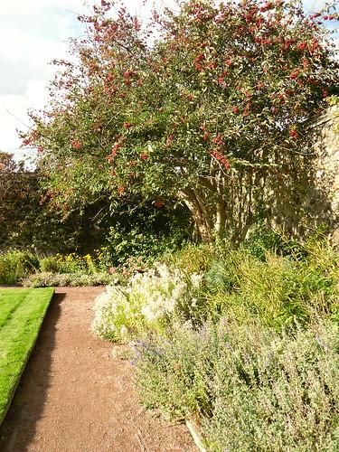 Aberdour Castle Garden