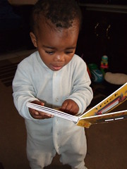 Thanda Reading Her Favourite Book (Chris Bloom) Tags: baby cute reading book toddler child sweet daughter books thanda