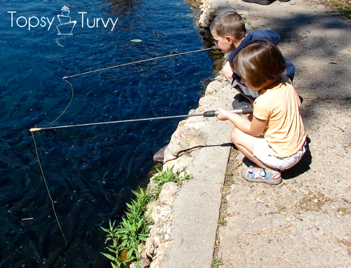 trout-farm-family-fishing