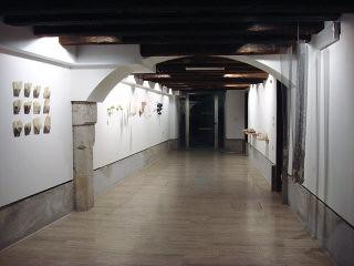 SG gallery