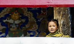 Am watching you. (Prabhu B Doss) Tags: india girl painting kid nikon mural buddha watching buddhism monastery gal gods tibetan leh himalayas thikse ladakh gompa thiksey travelphotography ladakhi jammuandkashmir 2011 bikeexpedition incredibleindia transhimalaya prabhub prabhubdoss d7000 zerommphotography 0mmphotography