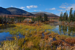 The Ogilvies (kdee64) Tags: autumn september yukon tundra dempsterhighway ogilviemountains northernyukon