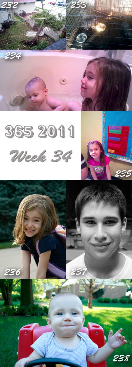 365 2011: Week 34
