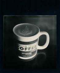 Spygirl (michales) Tags: bw white black fern film coffee shop silver project polaroid sx70 milk leaf style shade frame sonar latte spygirl impossible spyhouse onestep px600