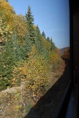 DSD_7694 (Greying_Geezer) Tags: autumn ontario canada fall colors colours scenic trains autumncolours railways railroads saultstemarie on algoma agawacanyon traintour