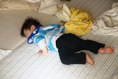 つっぷして寝てる