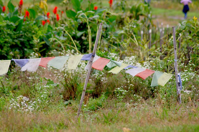 prayer flags on the side of the road