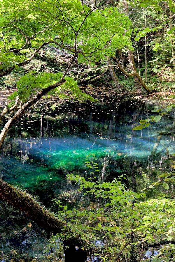 沸壺の池|青森県深浦町