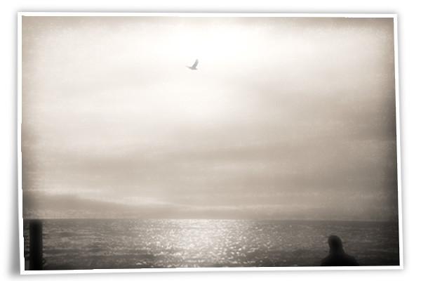 Hösthavet