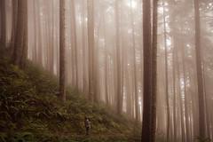 (lisa-wu) Tags: mountain oregon canon coast trail 7d neahkahnie 1755mm