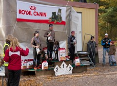 CaniCross, Women Winners (K3ntFIN) Tags: autumn copyright irish dogs speed canon finland eos championship mix october pointer outdoor shepherd sm running german 7d belgian finnish breed malinois 8th sleddog setter dobermann imatra lokakuu canicross 08102011 wwwvulfi