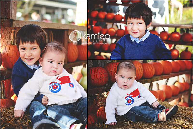 Pumpkin Patch Minis 2011