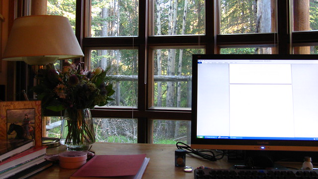 View from the desk.