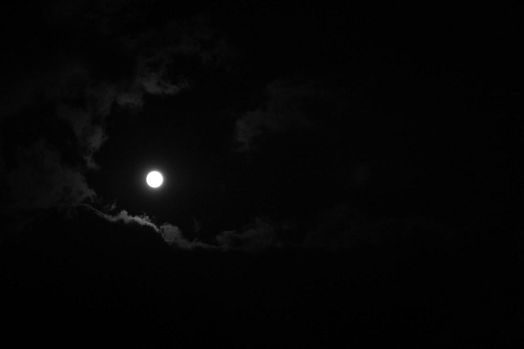 Moon Lit Skies