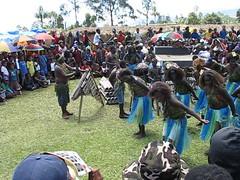 White and blue grass skirt dance (kahunapulej) Tags: show dance day song traditional tribal sing png tribe independence papuanewguinea eastern province singsing goroka ehp niugini hightland melanesian kahunapulej kahunapule