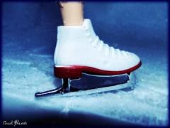 Foto Padro (Carol Parvati ) Tags: doll iceskating brenda picnik bratz cloe playsportz carolparvati