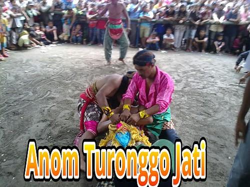 Anom Turonggo Jati by edisoesanto