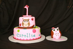 "Owl cake with owl smash • <a style=""font-size:0.8em;"" href=""http://www.flickr.com/photos/60584691@N02/6153196521/"" target=""_blank"">View on Flickr</a>"