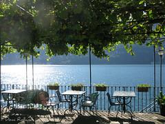 Bar de l' Amiti (Domi Rolland ) Tags: europe italia d lumire lac vert bleu italie feuille douceur iseo brillant