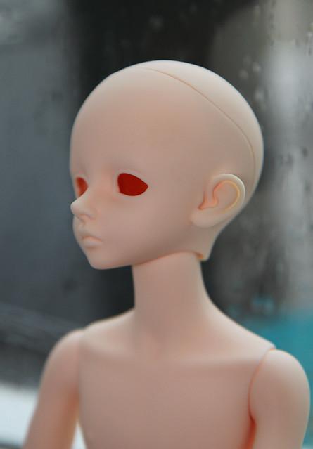 quinn unpainted profile
