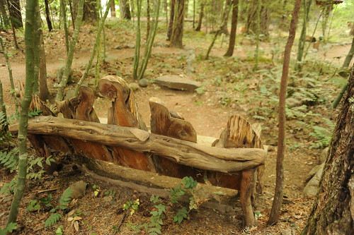 Hand-hewn bench with curved natural wood, sitting area, forest, trails, Breitenbush Hot Springs, Breitenbush, Marion County, Oregon, USA by Wonderlane
