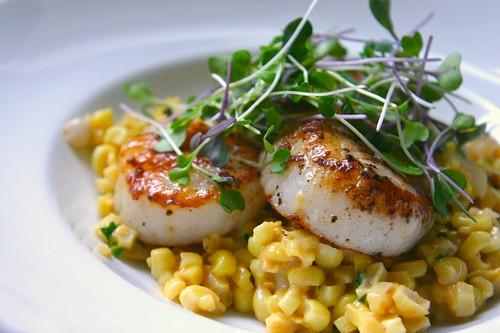 scallops with creamed corn & tarragon