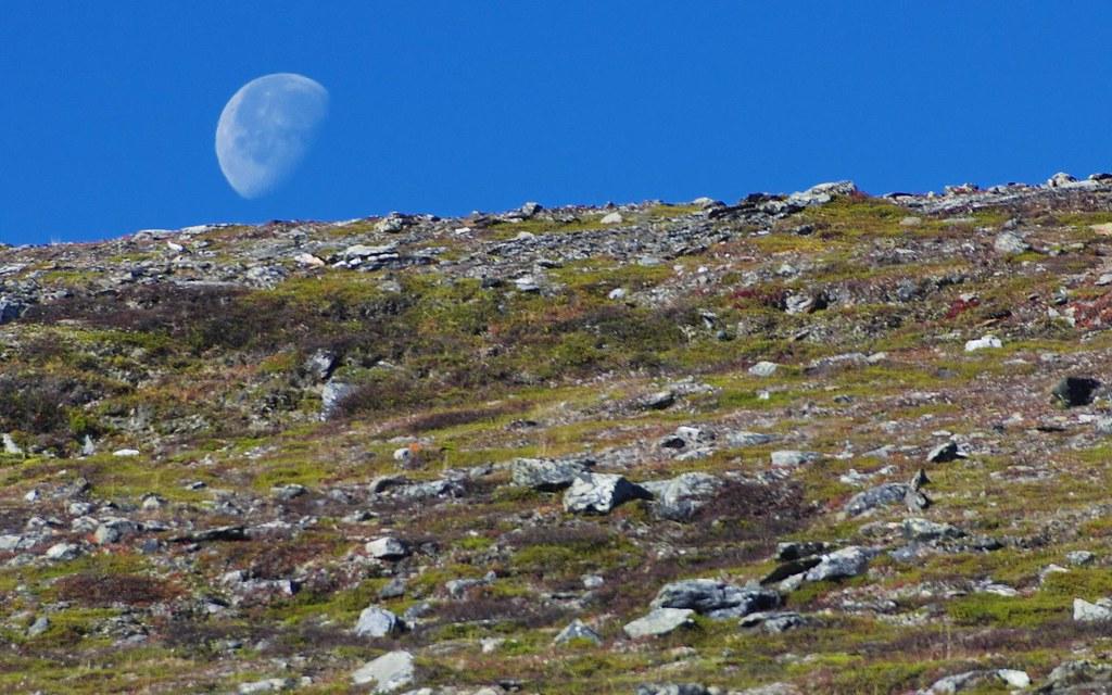 一個人的極圈之旅--北瑞典Abisko