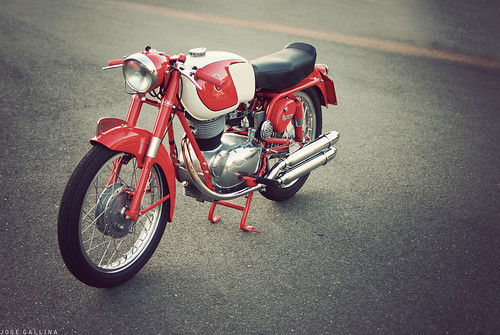 Gilera 175 Extra Rossa by southcount
