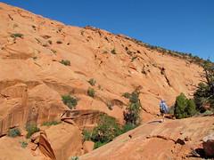 Redrock Country (rovingmagpie) Tags: utah hiking capitolreef redrock blueshirt capitolreefnationalpark uppermuleytwist muleytwistcanyon uppermuleytwistcanyon cdtw2011