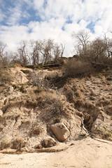 Eroding Coastal Bluff with Glacial Erratic (sandy richard) Tags: geology wildwood wildwoodstatepark newyorkstateparks longislandbeaches sandyrichard longislandgeology sandrarichard wildwoodstateparkgeology