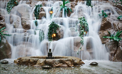 Waterfall (Abeer Hussein) Tags: