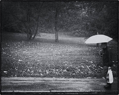 September 26 - Rainy Day (kejsardavid) Tags: autumn blackandwhite bw man rain umbrella bag gteborg nikon sweden gothenburg sverige regn hst paraply svartvitt pse d700 nikkor35f14 nckrosdammen