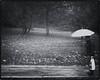 September 26 - Rainy Day (kejsardavid) Tags: autumn blackandwhite bw man rain umbrella bag göteborg nikon sweden gothenburg sverige regn höst paraply svartvitt påse d700 nikkor35f14 näckrosdammen