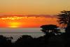 Sunset in Majunga... (jendayee) Tags: trees sunset red sea sky orange nature yellow clouds niceshot madagascar photographyrocks flickraward mygearandme mygearandmepremium ringexcellence blinkagain dblringexcellence tplringexcellence bestofblinkwinners